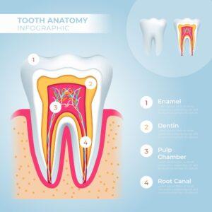 dientes-blog-clinica-soria